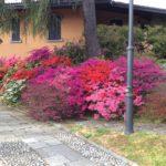 Splendida villa sul lago di Como