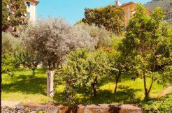 Trilocale a Camogli zona Boschetto.